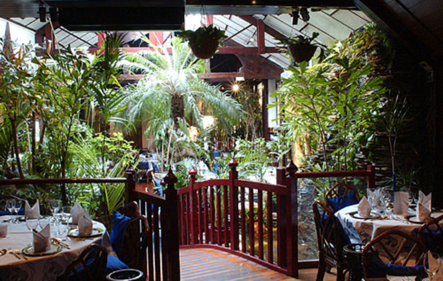 Manger dans la jungle en plein paris c est possible